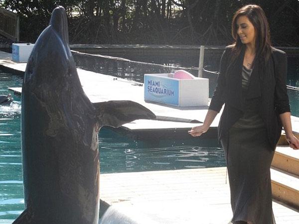 شاهد كيم كارداشيان تداعب «الدلافين»