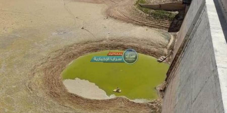 """خبراء لـ""""سرايا"""": جميع السدود في المملكة معرضة للجفاف على غرار سد الوالة  ..  تفاصيل"""