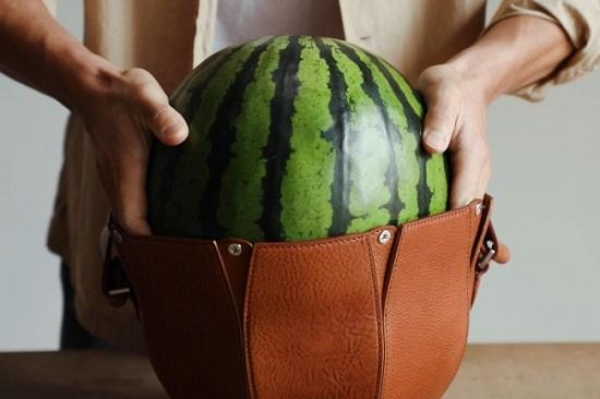 حقيبة لحمل البطيخ تشعل مواقع التواصل في مصر ..  صور
