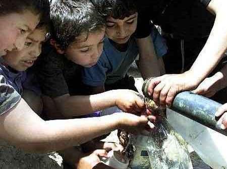 مواطنو الكرك يلجأون للصهاريج للتغلب على شح المياه