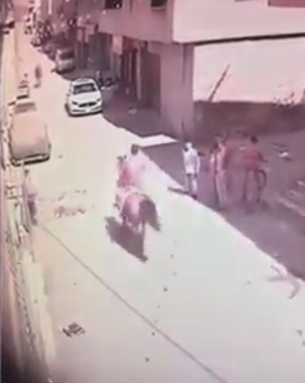 بالصور و الفيديو  ..  حادثة تصادم حصانين صبيحة عيد الفطر تنتهي بموت أحدهما