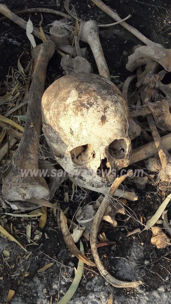 انتهاك حرمة مقبرة في اربد بنبش القبور واخراج عظام الموتى ..  صورة