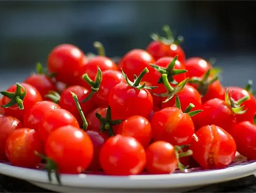 الطماطم الكرزية .. هل هي مفيدة للجسم؟