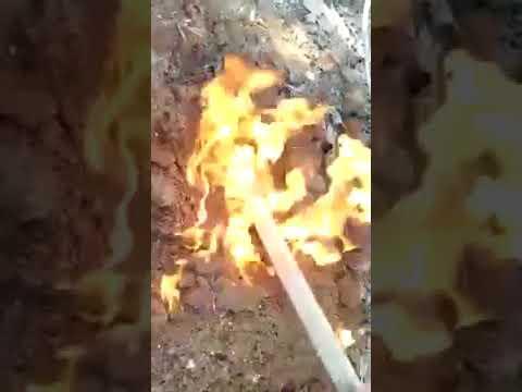 """بالفيديو: باحثون عن ذهب ينشرون مقطع لمنع """"رصد"""" لهم الاقتراب من كنز"""