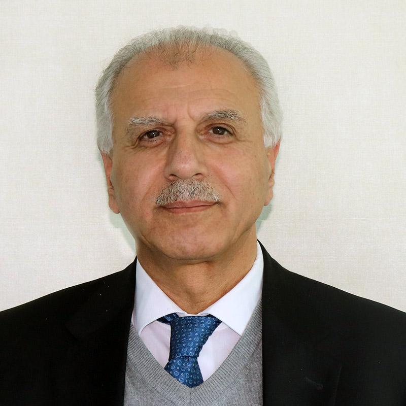 """عميد كلية الطب الأسبق بـ""""الأردنية"""" لـ""""سرايا"""": عمليات """"قص المعدة"""" تندرج تحت الطب التجاري الذي أصبح رائجاً هذه الأيام"""