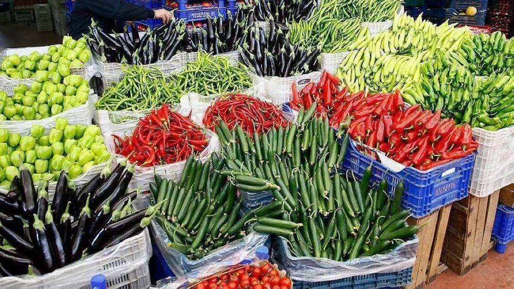 فاو: ارتفاع أسعار الأغذية عالميا للشهر التاسع على التوالي