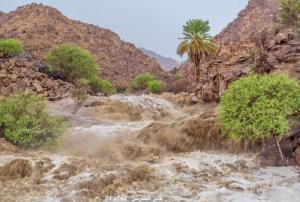 """فيديو :  أمطار غزيرة تسيل أودية ديار """"الثعل"""" جنوب الطائف"""