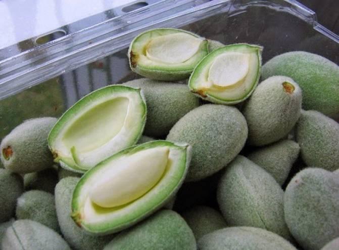 اللوز الأخضر لتقليل مستويات الكولسترول