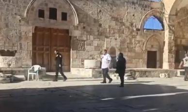 بالفيديو ..  احد قطعان المستوطنين يقتحم باحات المسجد الأقصى بحماية قوات الاحتلال
