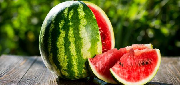 مزارعو الأردن: جهات خارجية تروج لضرب منتج البطيخ الأردني
