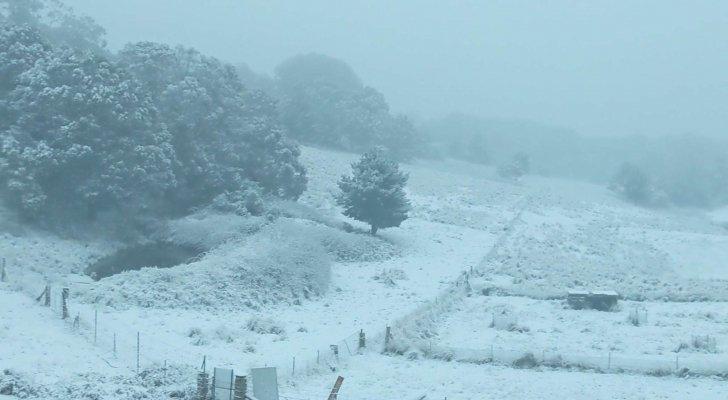 بالفيديو ..  الثلوج تغطي أستراليا وتتسبب بانقطاع التيار الكهربائي