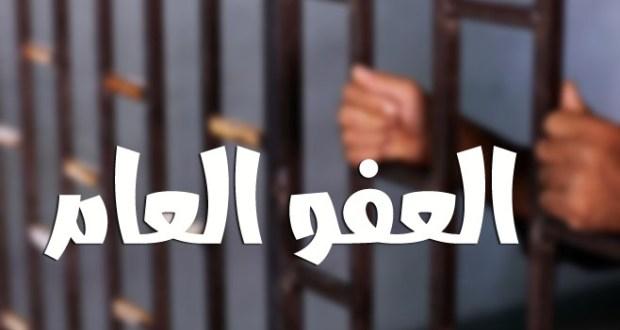 """وزير العدل لسرايا :  مجلس الوزراء سيصدر قراراً حول """"العفو العام"""" بعد (11) يوماً"""