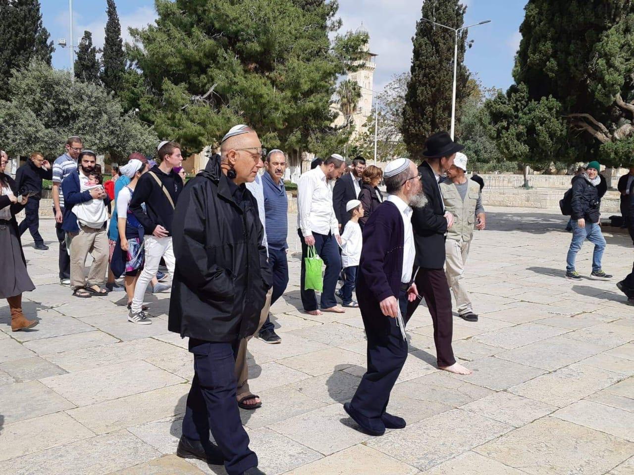 237 مستوطنا يقتحمون الأقصى بقيادة قائد شرطة الاحتلال في القدس