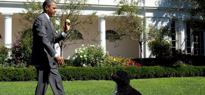 """عائلة الرئيس الأمريكي السابق باراك أوباما تودّع الكلب """"بو"""""""