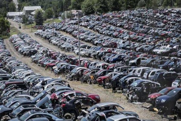 إزالة 100 هيكل سيارات مستعملة في صناعية إربد