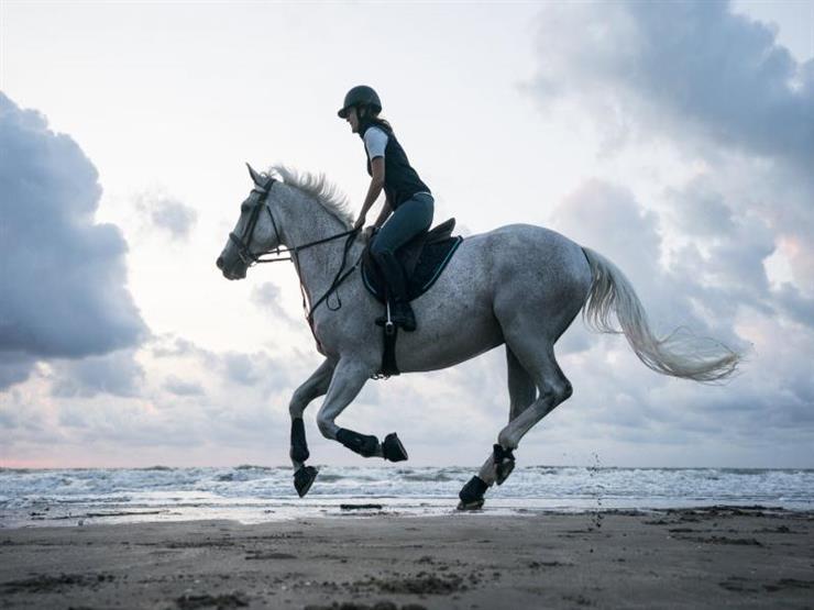 ما هو تفسير حلم ركوب الخيل للعزباء لابن سيرين؟