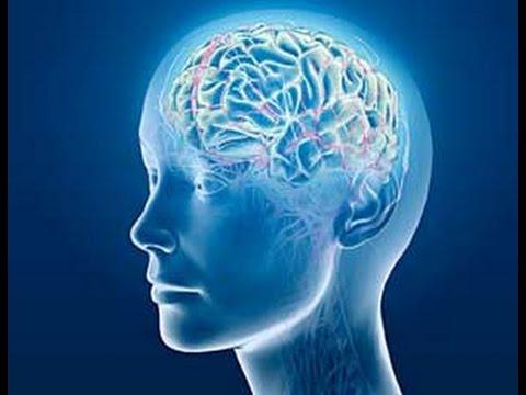 الإستماع للقرآن ينشط خلايا الدماغ