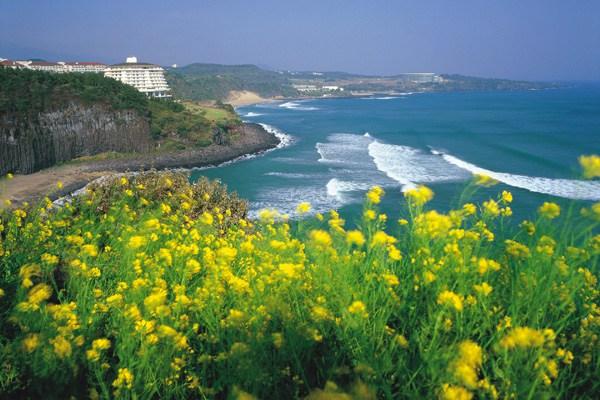 """بالصور ..  جزيرة جيجو الكورية ..  جنة """"عدن"""" على الأرض!"""