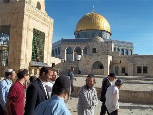 مستوطنون يقتحمون المسجد الأقصى وسط حراسة الاحتلال
