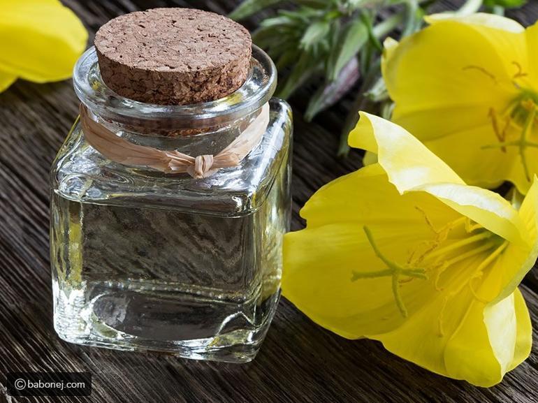 ما فوائد حبوب زهرة الربيع واستخداماتها