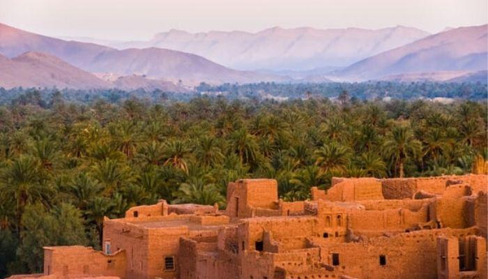 بالصور .. مزارات سياحية بالواحات المصرية
