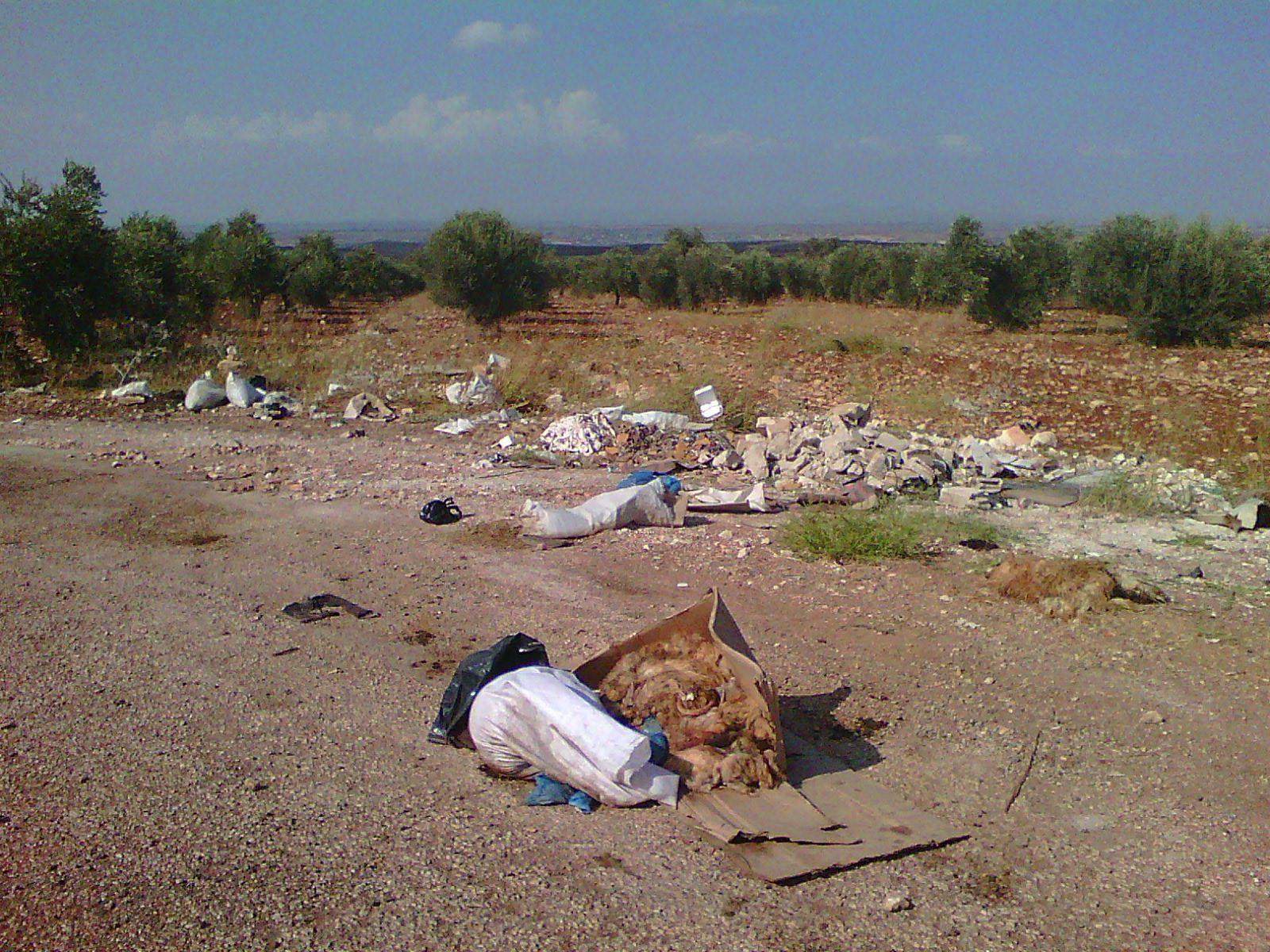 بالصور  ..  مخلفات و نفايات بوسط الشوارع في بني كنانة والبلدية غائبة