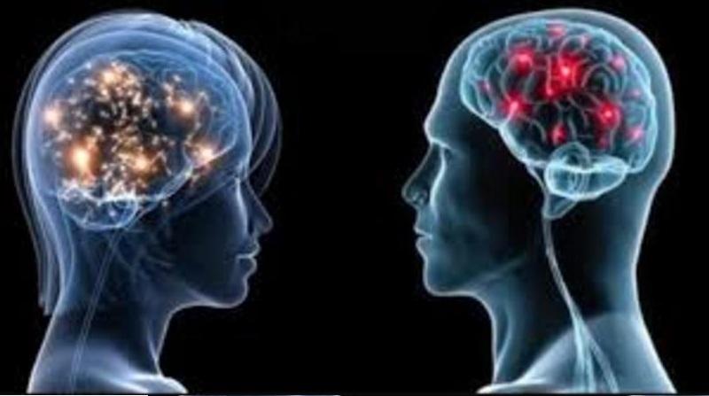تعرف على أبرز 10 حقائق علمية عن دماغ المرأة والرجل