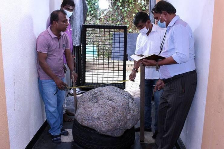 سريلانكي يعثر على 'أكبر حجر ياقوت أزرق في العالم' قيمته 100 مليون دولار