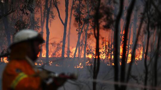 موجة حر شديد تضرب أستراليا