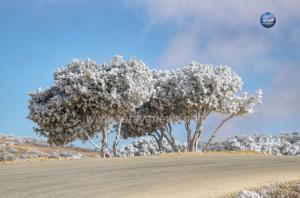 الأرصاد تنشر حالة الطقس في المملكة و توقعات بعودة الثلوج نهاية الأسبوع  ..  تفاصيل