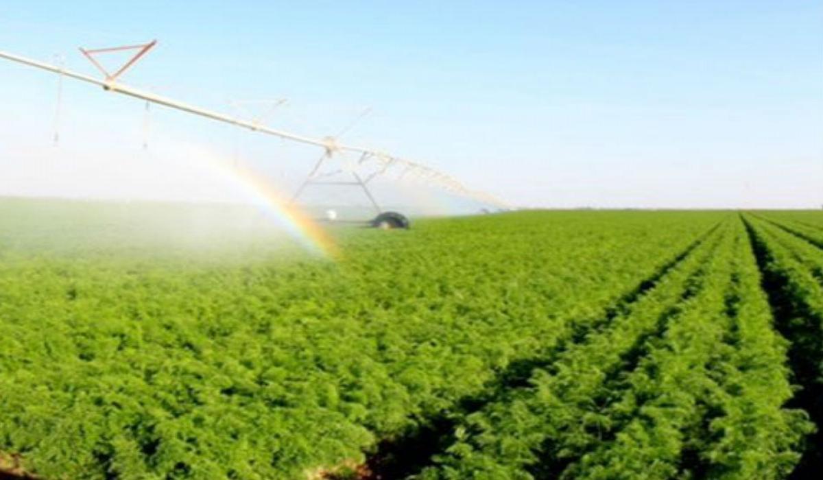"""""""زراعة النواب"""" تطالب بتأجيل قروض المزارعين"""