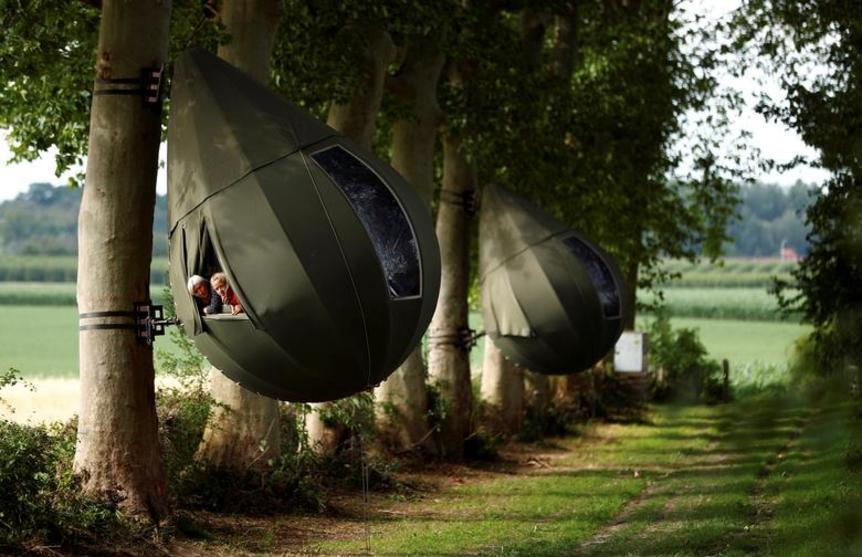 فيروس كورونا يدفع البلجكيين إلى التخييم في الأشجار
