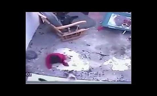 بالفيديو :قطة تنقذ طفلا رضيعا من موت محقق في الصين