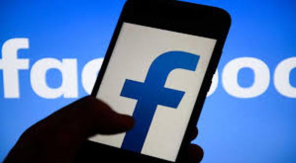 """""""فيسبوك"""" يحذف بثا مباشرا لبومة تطعم صغارها بحجة مشاهد خادشة للحياء"""