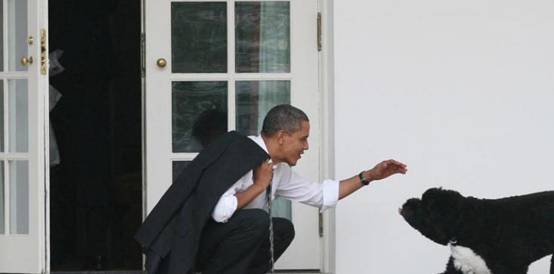 """شاهدوا  ..  أوباما ينعى كلبه: """"خسرت أسرتنا صديقاً حقيقياً و رفيقاً مخلصاً"""""""