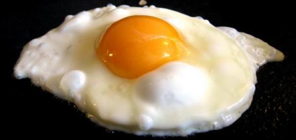 153 بيضة سنويا معدل استهلاك الفرد في الأردن