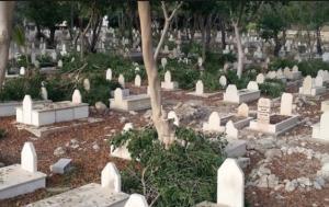 الإفتـاء تصدر فتوى شـرعًية حول زراعـة الأشجار في المقابر