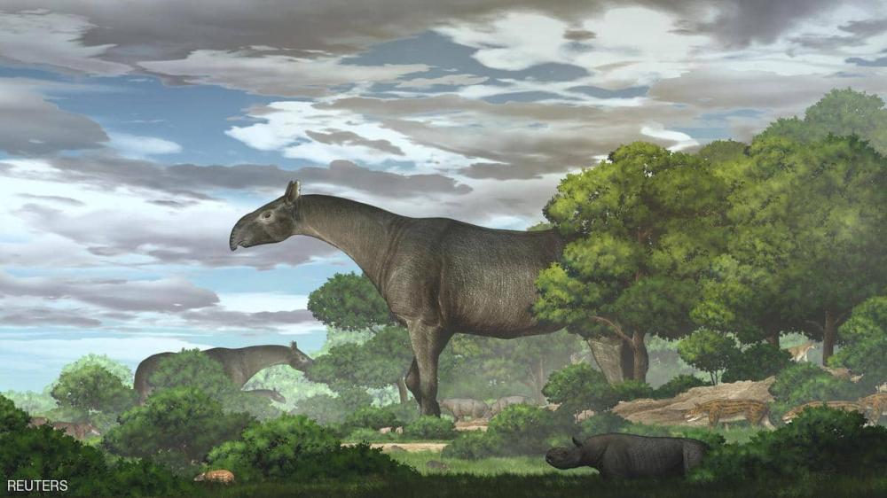 الصين: اكتشاف بقايا وحش عملاق عاش قبل 26 مليون سنة