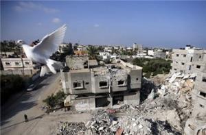260 أسرة فلسطينية نزحت من سوريا  تطالب بحقوقها