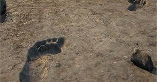 آثار أقدام في السعودية ..  عمرها 120 ألف سنة