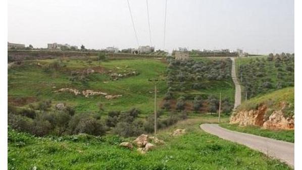1.3 مليون دونم الأراضي المسجلة حراجا بالأردن