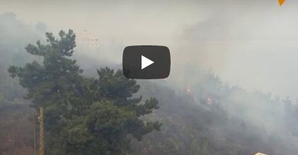 بالفيديو  .. الأمطار تُنقذ لبنان من الحرائق