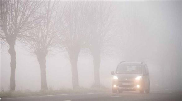 تدابير مهمة لأمان القيادة في الضباب