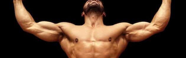 تفسير رؤية العضلات في المنام