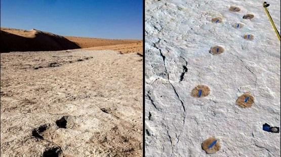 السعودية: اكتشاف آثار أقدام تعود لـ 120 ألف سنة