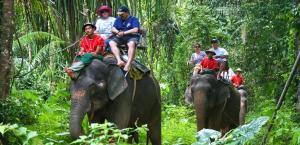 أفضل الأنشطة العائلية في جزيرة كوه ساموي بتايلاند