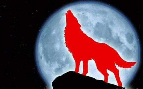 """ما هو مرض """"الذئبة الحمراء"""" الذي تسبب بوفاة طالبة في جامعة اليرموك وشكّل صدمة لمن حولها؟َ"""