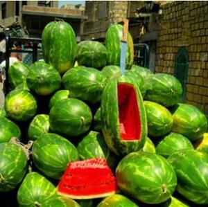"""""""المستهلك"""" ترد على الزراعة بعد تشكيكها بما نقلته بخصوص """"البطيخ"""""""