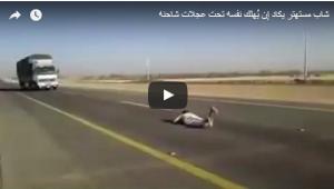 بالفيديو: شاب يستعرض بالارتماء أمام شاحنة مسرعة