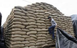 لجنة فنية: نسبة الشوائب لشحنة القمح ضمن الحدود المسموح بها
